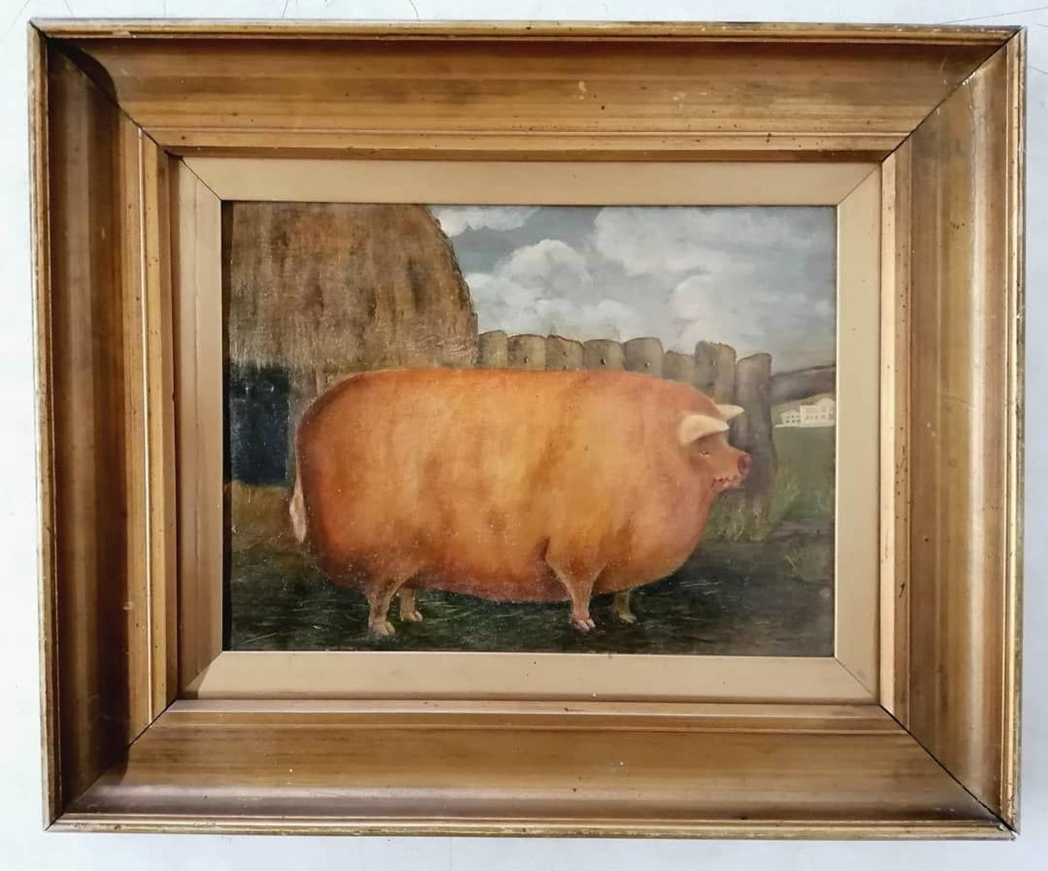 19th Century Primitive Prize Pig