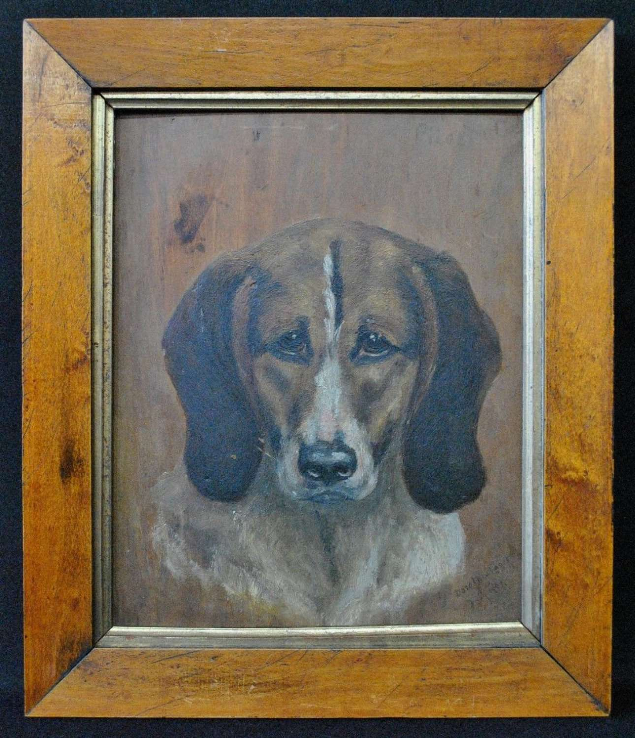 PORTRAIT OF A HOUND