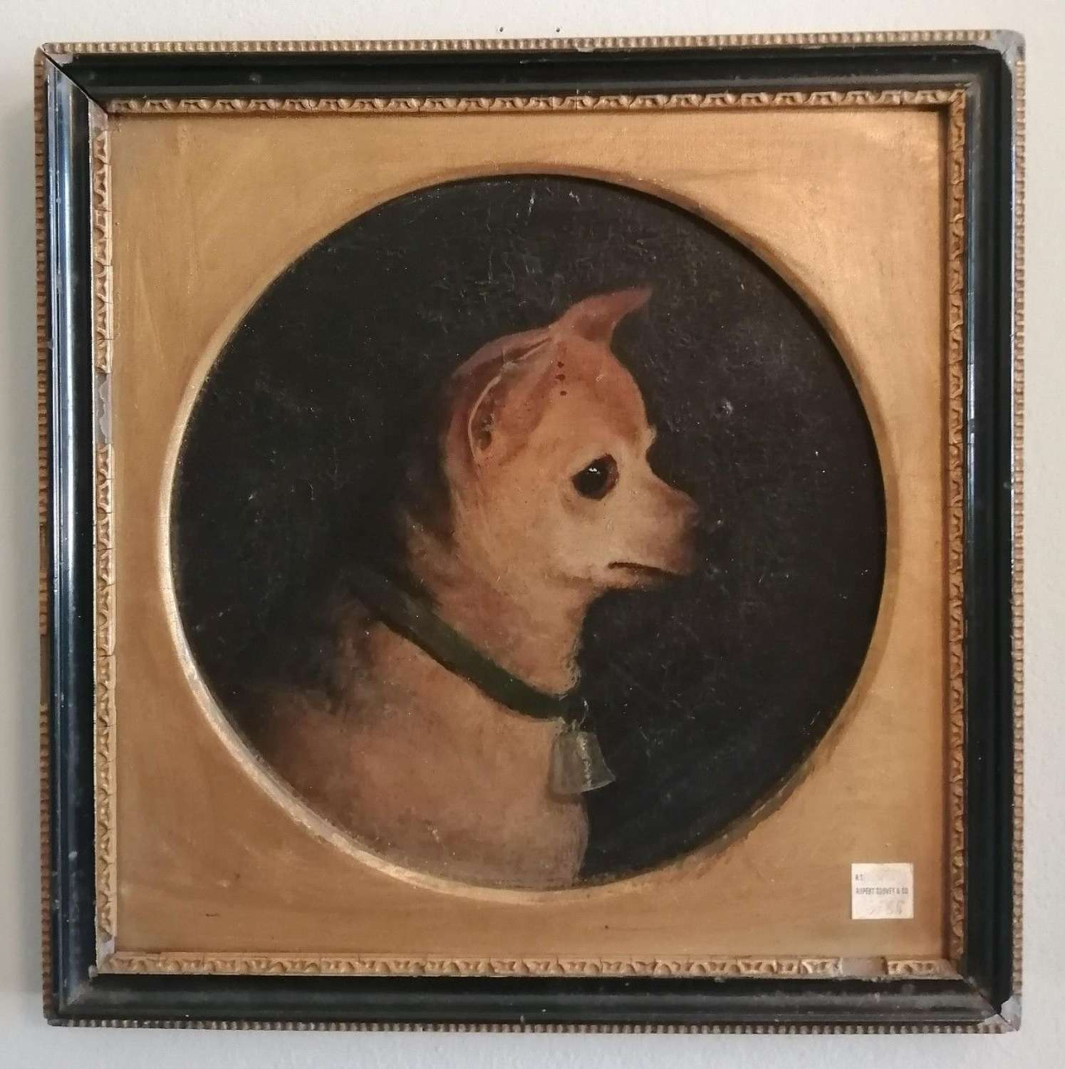 CHIHUAHUA (ENGLISH, 19TH CENTURY)